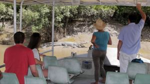 Whitsunday Crocodile Safari - Attractions