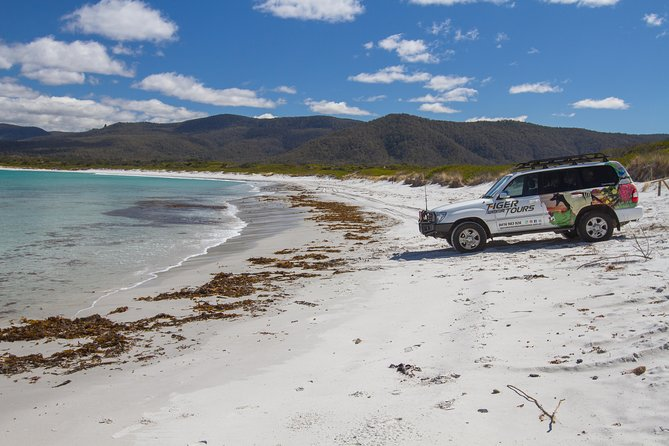 4X4 and Lunch Half Day Bicheno Coastal Mountain - Attractions
