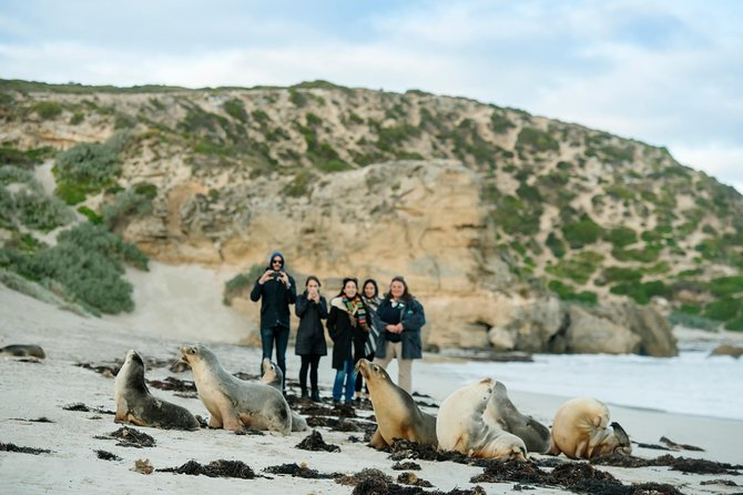 Small-Group Kangaroo Island 4WD Tour from Adelaide - Attractions