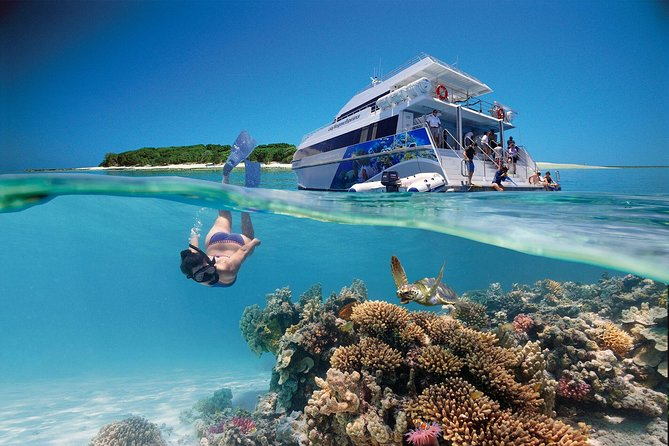 3-Day Southern Great Barrier Reef Tour Including Lady Musgrave Island - Attractions