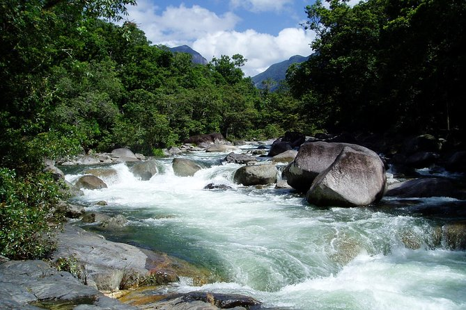 Daintree Rainforest Cape Tribulation Mossman Gorge in a day - Attractions