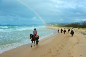 Rainbow Beach Horse Ride - Attractions