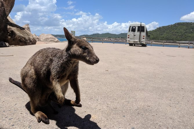 Magnetic Island Tour Maggie Comprehensive - Attractions