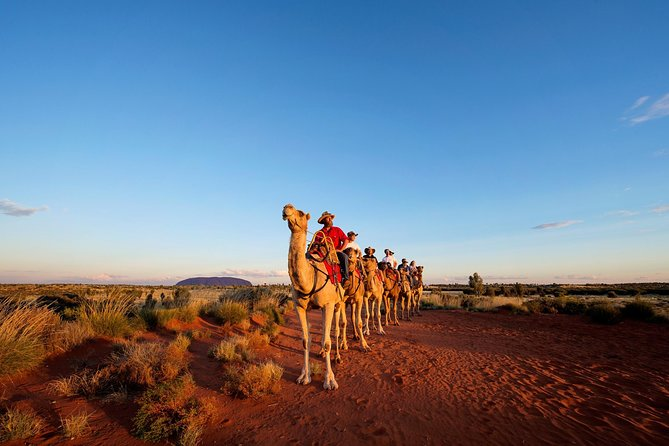 Uluru Camel Express Sunrise or Sunset Tours - Attractions