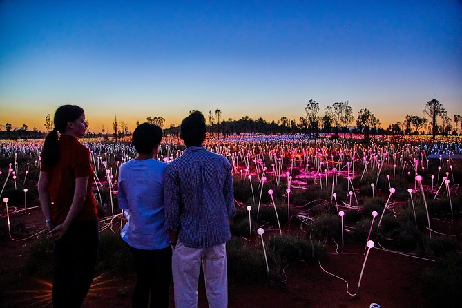 Uluru Field of Light Sunrise Tour - Attractions