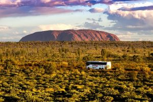 Coach Transfer from Kings Canyon Resort to Ayers Rock Resort - Attractions