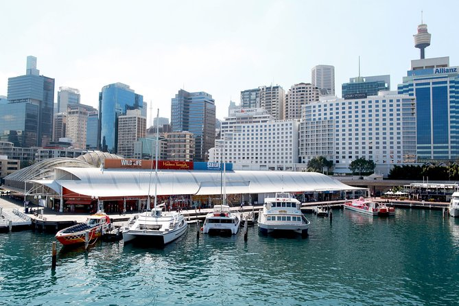 Sydney Attraction Pass Darling Harbour Experience Ticket