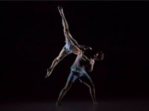 Sydney Dance Company - Attractions