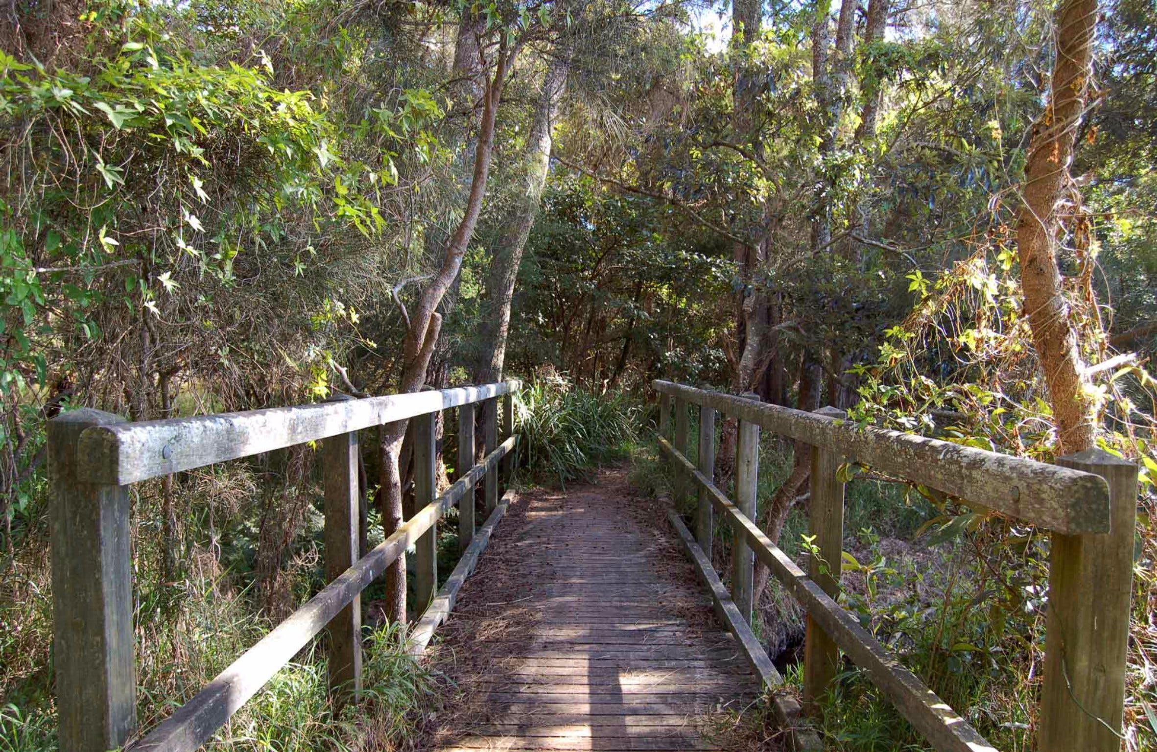 Awaba Bay Foreshore Walk - Attractions