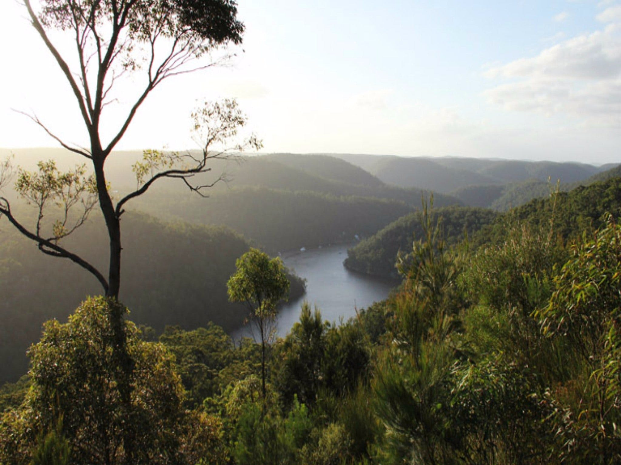 Berowra Valley National Park - Attractions