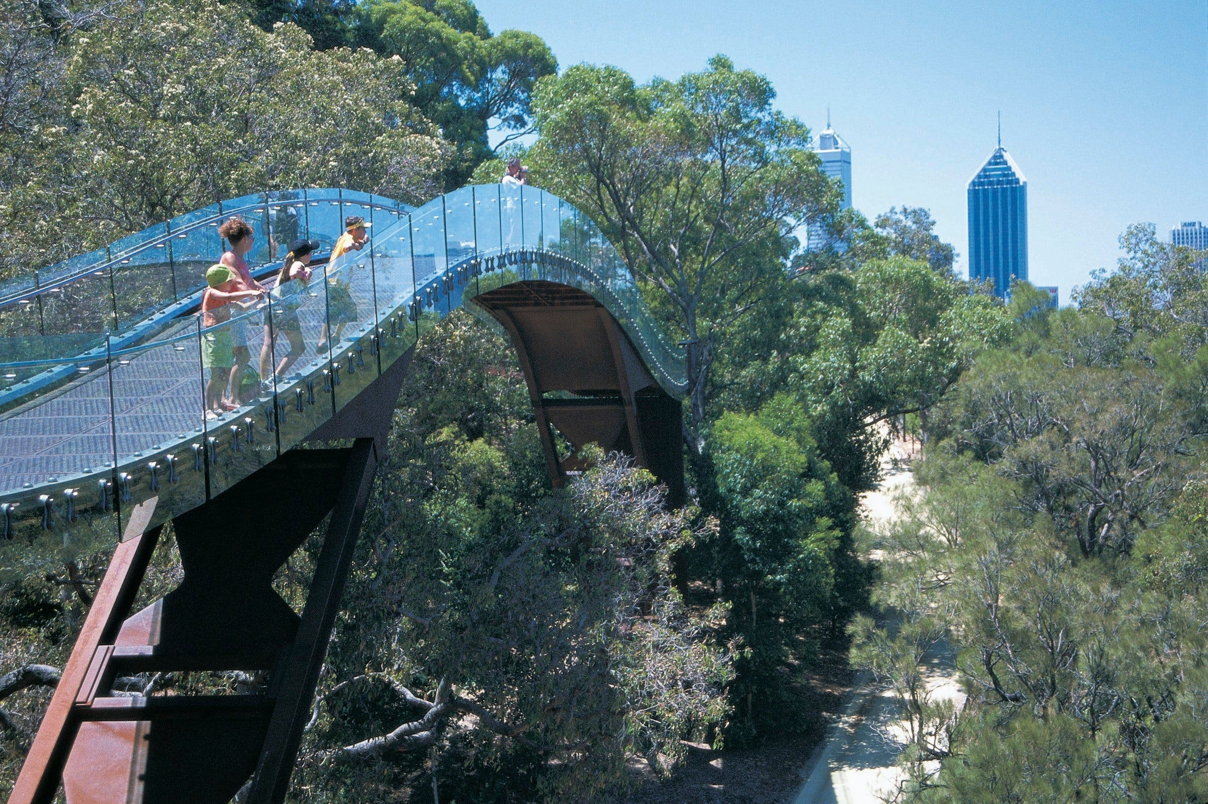 Law Walk - Kings Park - Attractions