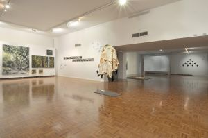 Noosa Regional Gallery - Attractions
