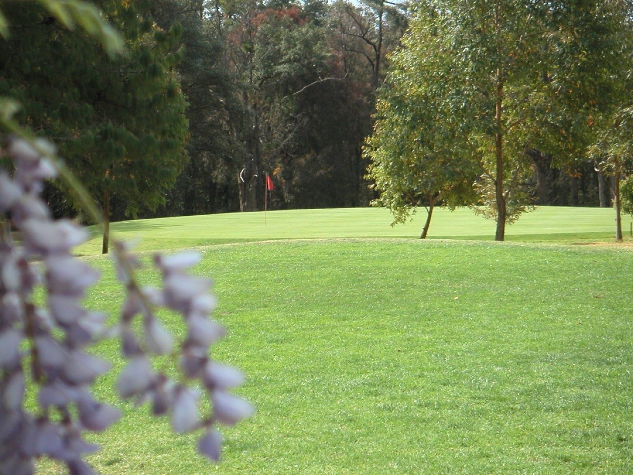 Springwood Country Club - Attractions