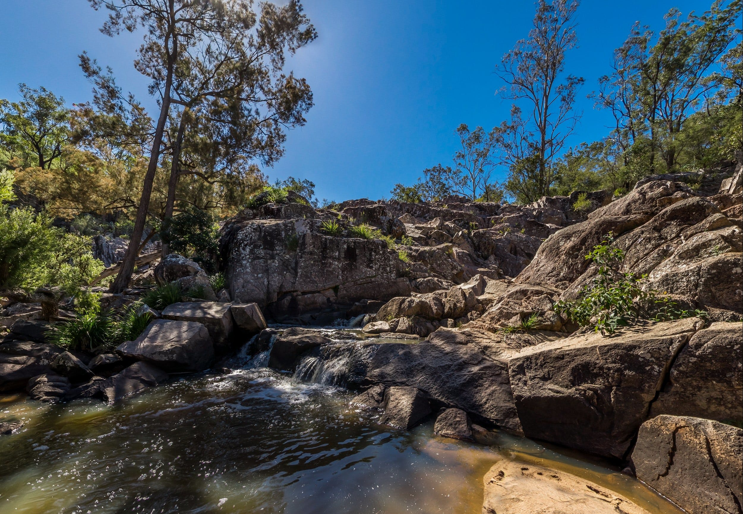 Crows Nest Falls - Attractions