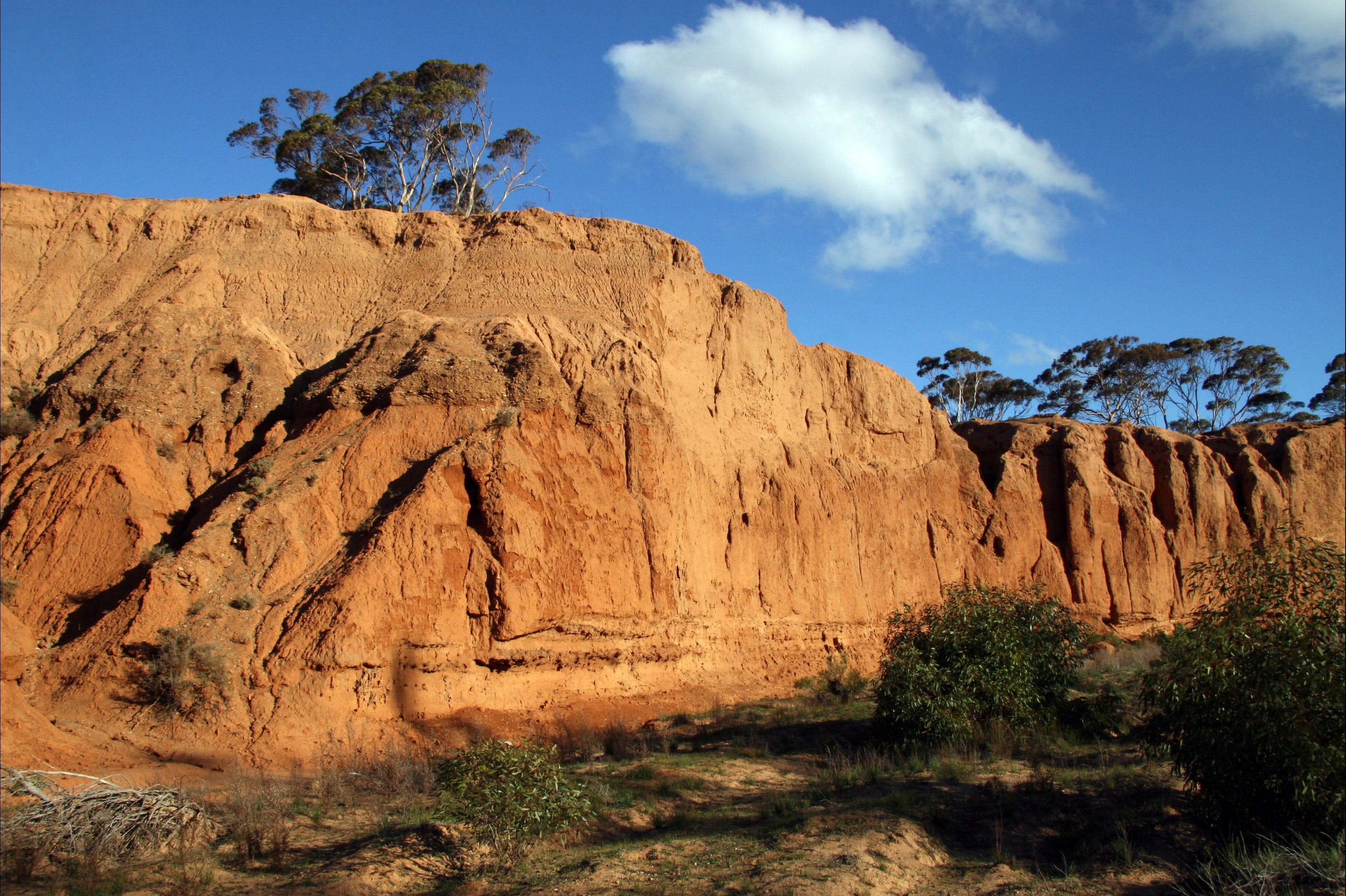 Red Banks Conservation Park - Attractions