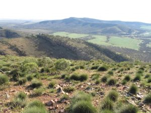 Horseshoe Rim 4WD Adventure Track - Attractions
