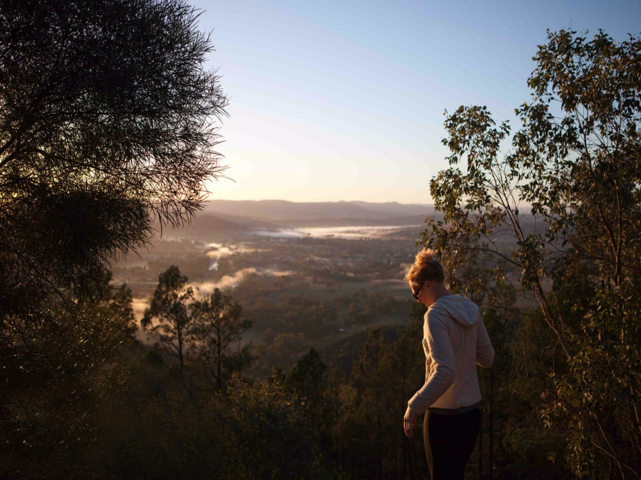 Mount Arthur Reserve - Attractions
