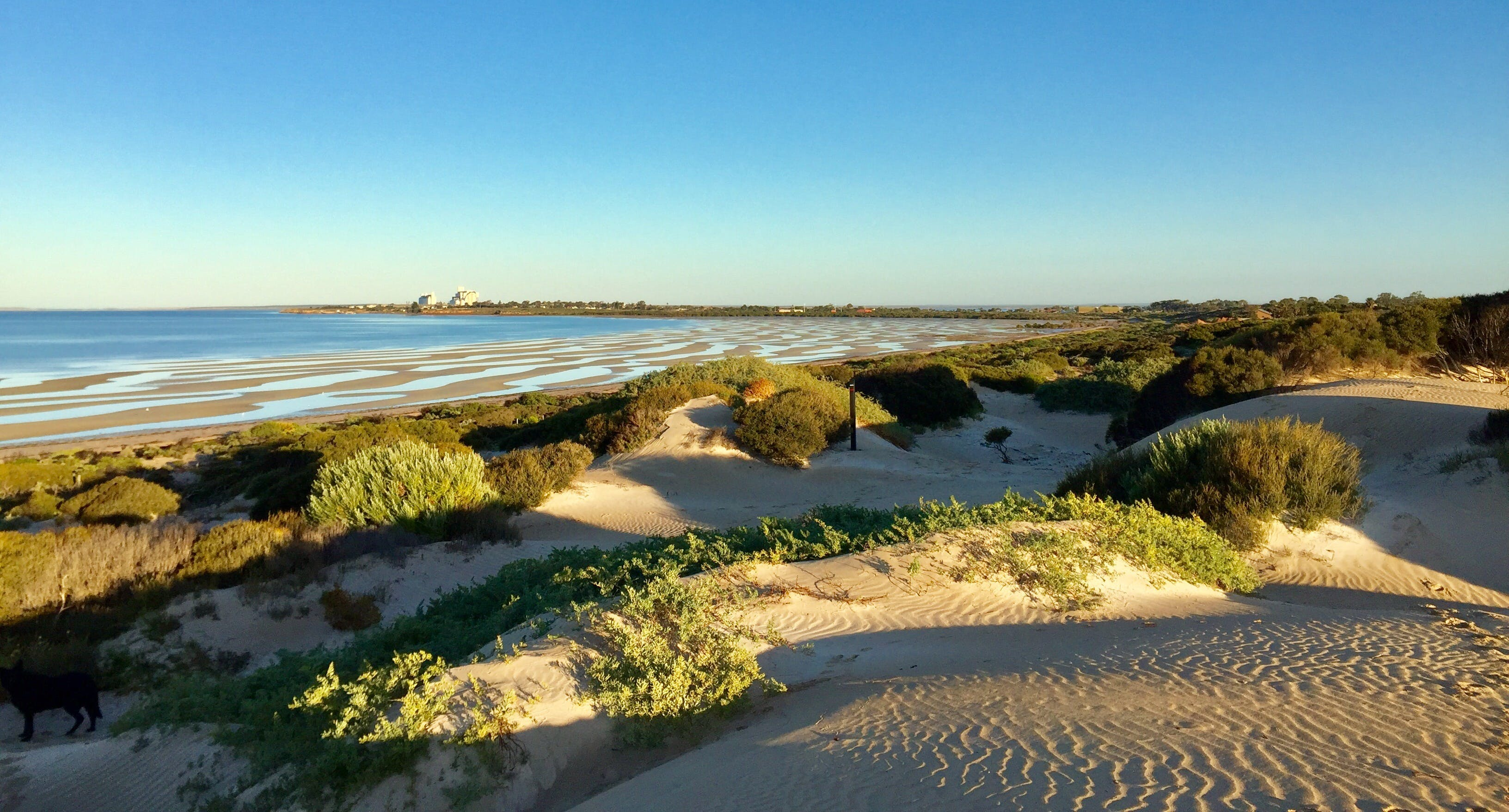 Shelly Beach Dune Walk Trail - Attractions