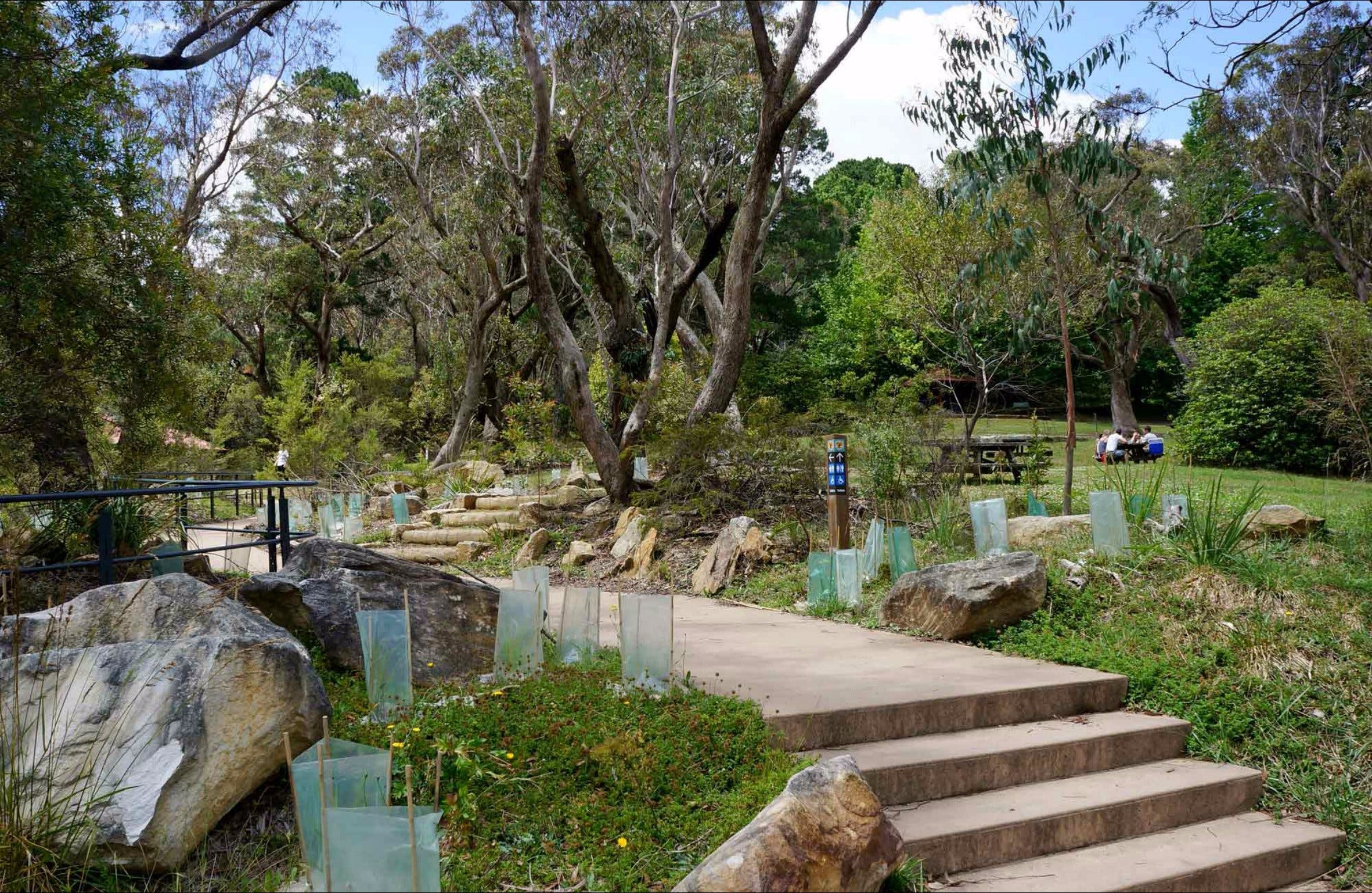 Wentworth Falls picnic area - Attractions
