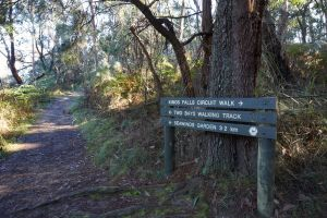 Arthurs Seat to Kings Falls Walk - Attractions