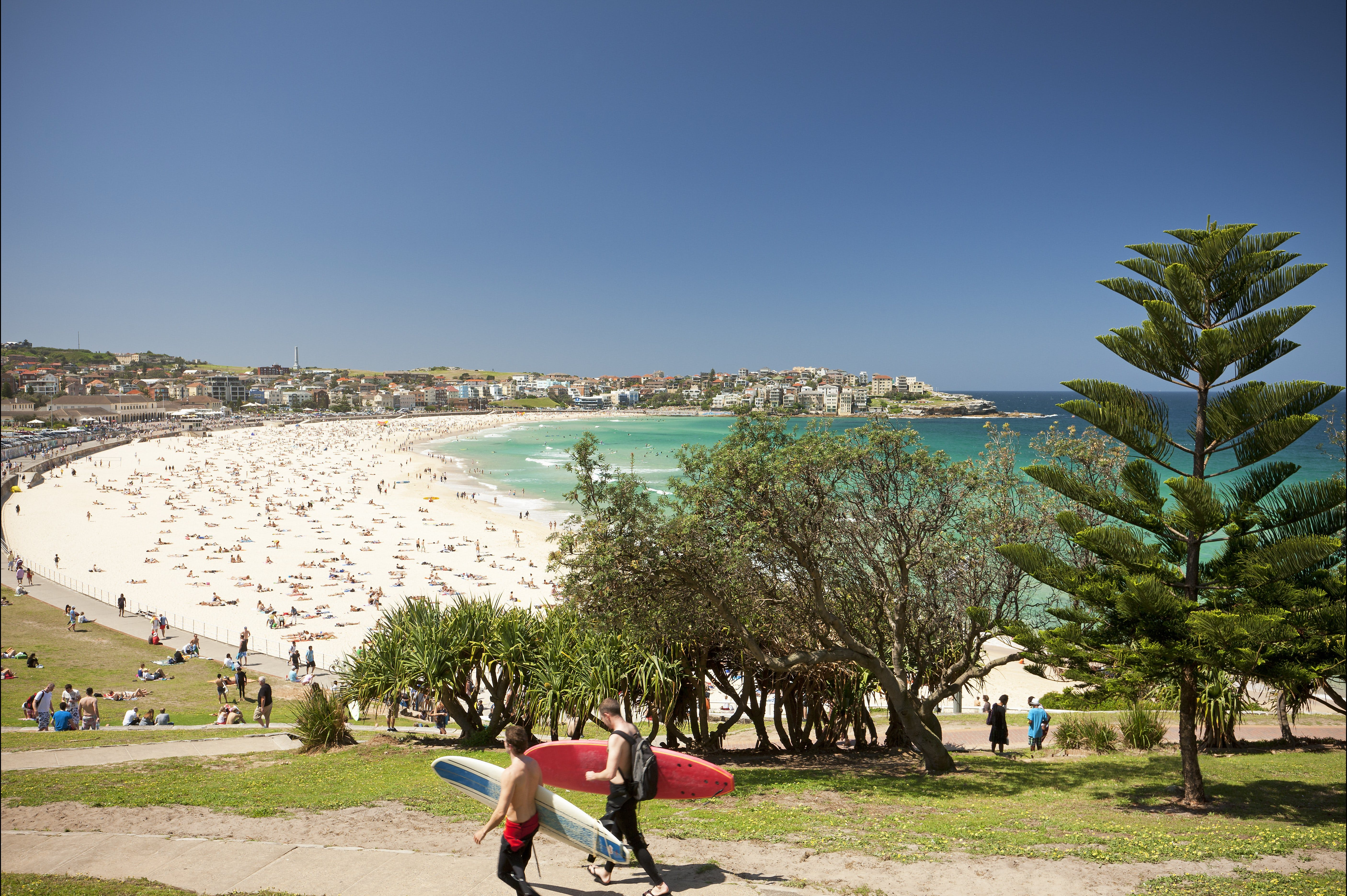 Bondi to Coogee Coastal Walk - Attractions
