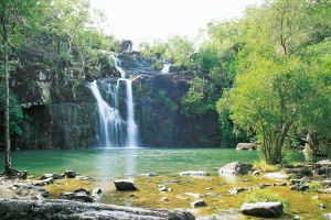 Cedar Creek Falls - Attractions