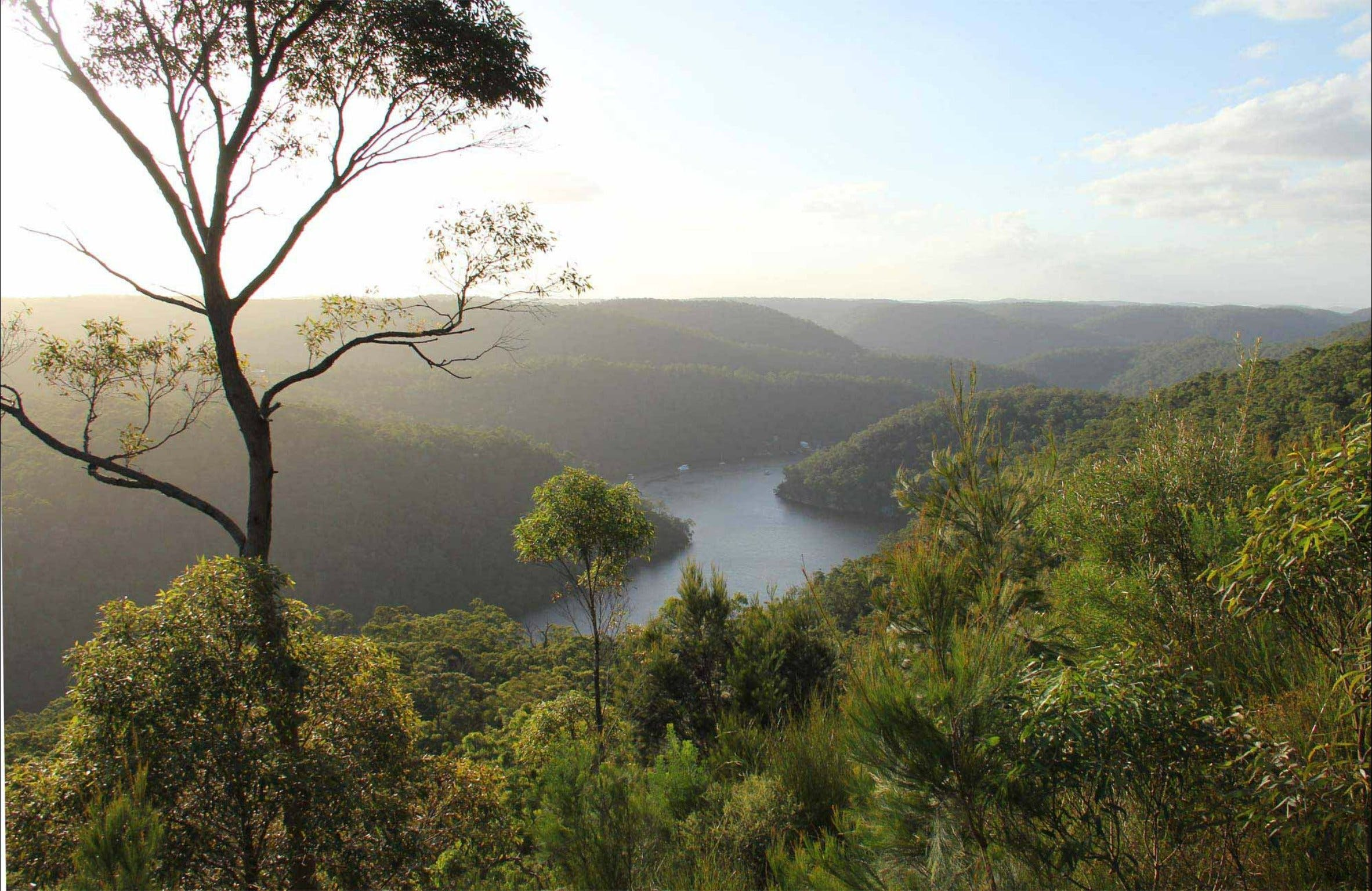 Great North walk - Berowra Valley National Park - Attractions