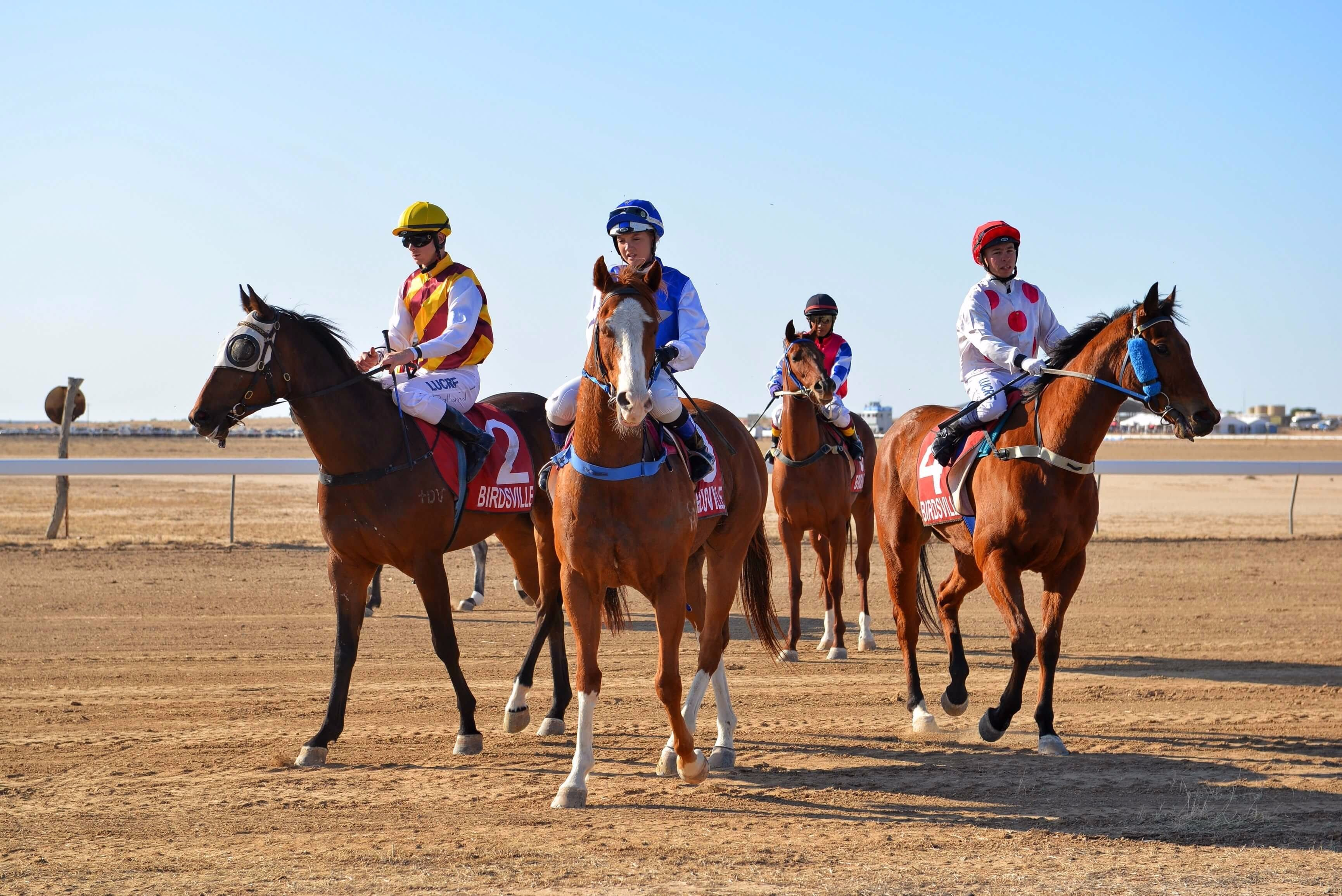 Simpson Desert Racing Carnival Trail - Attractions