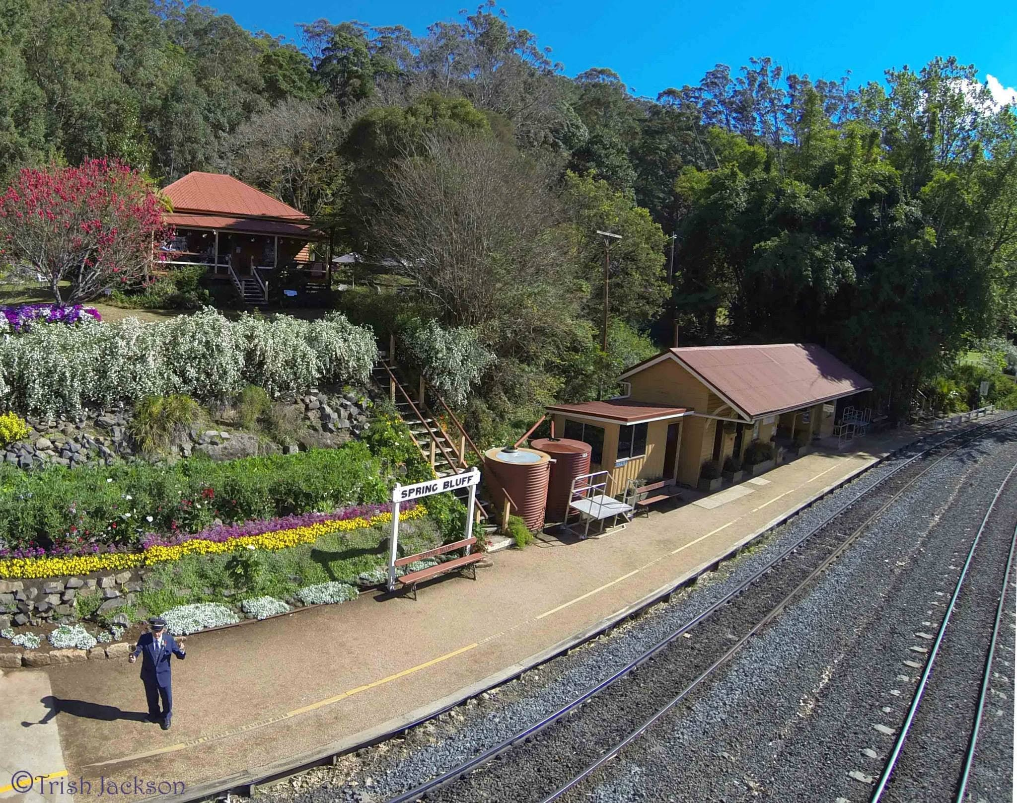 Spring Bluff Railway Station - Attractions