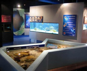 Marine and Freshwater Discovery Centre - Attractions