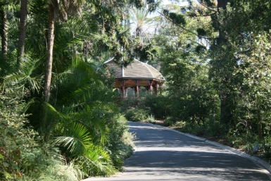 Royal Botanic Gardens Victoria - Attractions