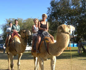 Calamunnda Camel Farm - Attractions