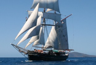 Australian Tallship Cruises - Attractions
