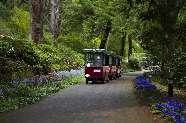 Araluen Botanic Park - Attractions